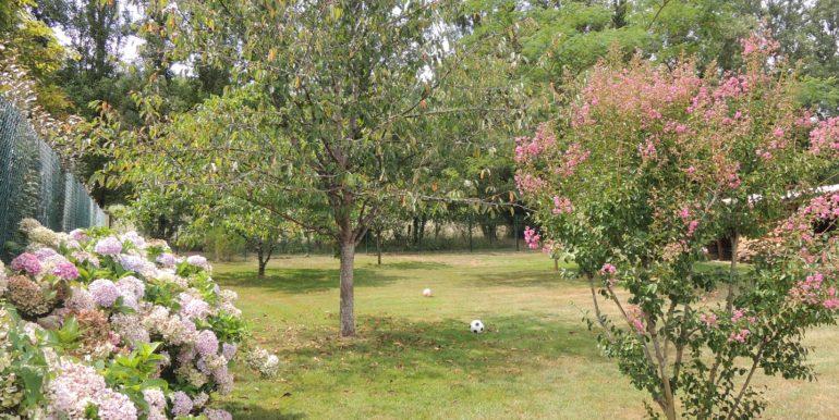 B985_jardin_maison_recente